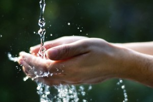 Acqua: principale mezzo per la propagazione dei sapori